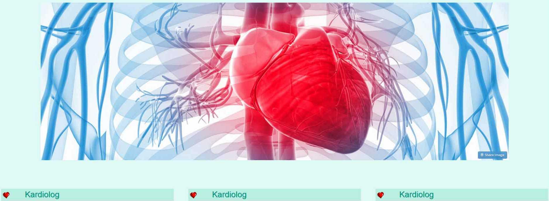 Kardiolog radom